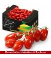 Pomodorini datterini di Pachino - 6.5kg