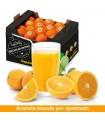 Arance Sicilia bionde da Spremuta - 13kg